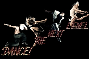 The AccessDance Network